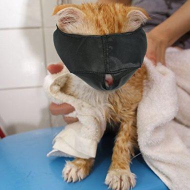 Xbes Nylon Cat Muzzles