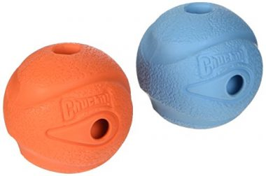 Petmate Canine Hardware Chuckit! The Whistler Balls