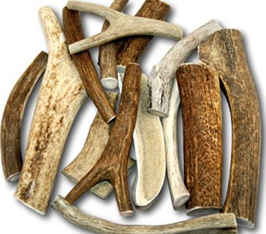Top Dog Chews Premium Large Antler