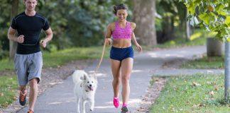 best dog for runners