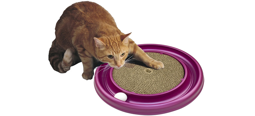 cat's scratch pad