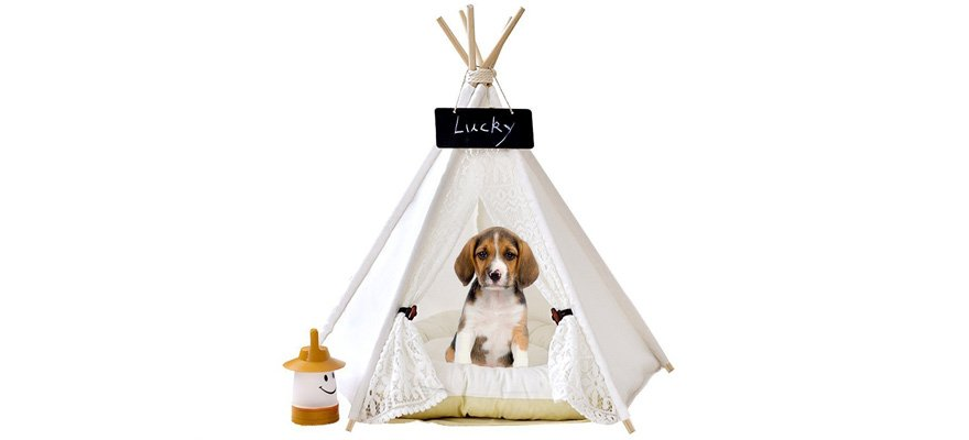 dog teepee beds