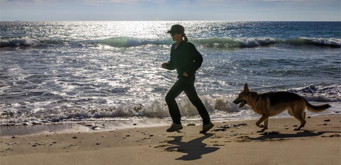german shepherd running with the onwer