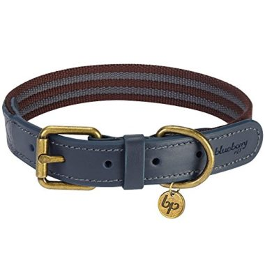 Blueberry Pet Leather Webbing Dog Collar