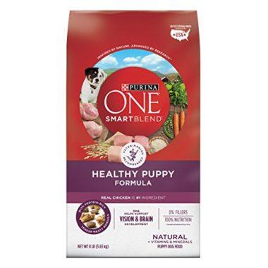 Nestle Purina PetCare ONE SmartBlend Dry Dog Food