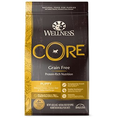 Wellness Core Natural Grain Free Dry Puppy Food