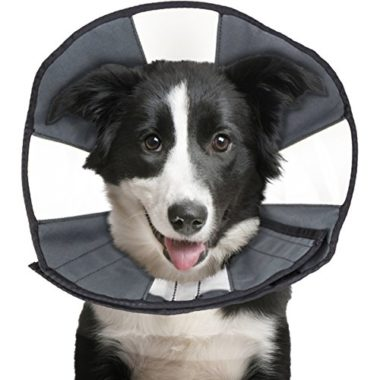 ZenPet ProCone Pet E-Collar