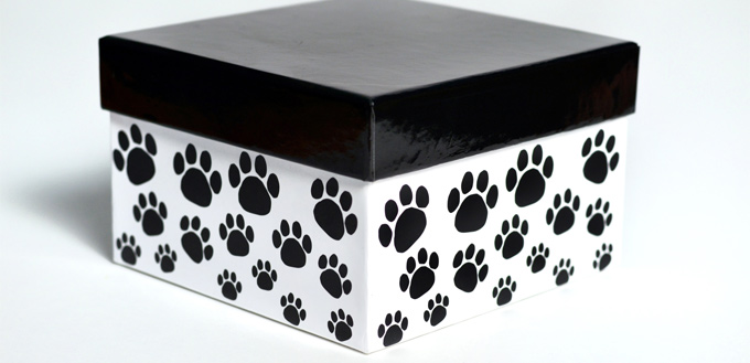 box urn with dog ashes