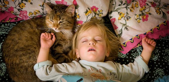 cat sleeping on a child's head