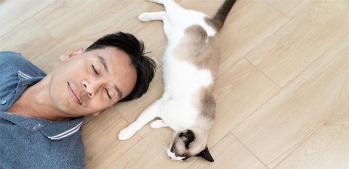 cat sleeps on human's head