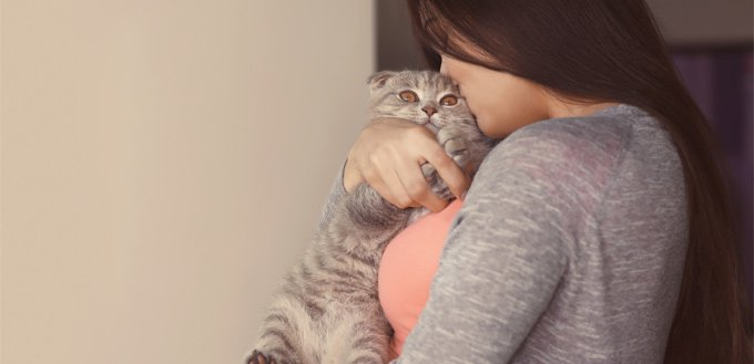 how your cat shows affection to you