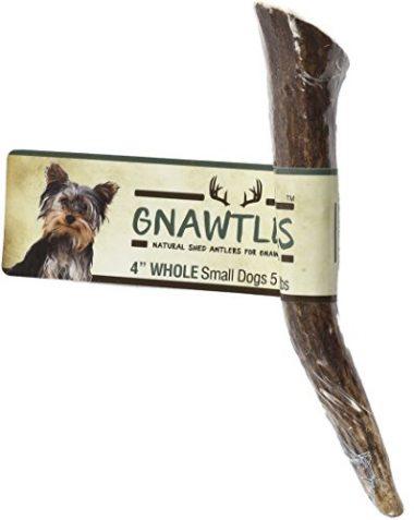 Gnawtlers – Premium Elk Antlers For Dogs