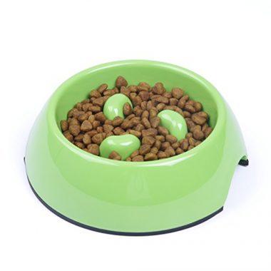 Super Design Interactive Anti-Gulping Slow Feed Dog Bowl