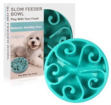 Siensync Slow Feeder Dog Bowl