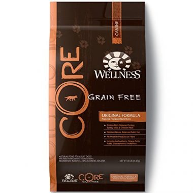Wellness Core Grain Free Dry Dog Food
