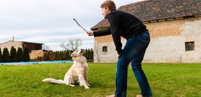 man playing catch with his dog