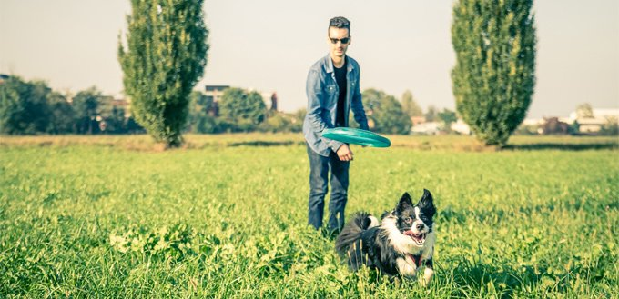 man playing frisbee with his dog