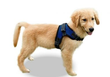 Copatchy No Pull Reflective Dog Harness