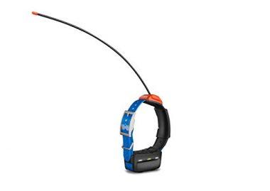 T5 GPS Dog Collar by Garmin
