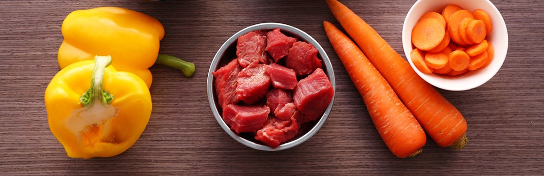 5-Tips-for-Detoxing-Your-Dog-from-Life's-Daily-Toxins