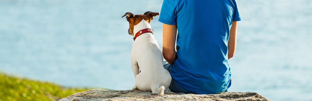 5 Ways to Say I Love You in Dog Language