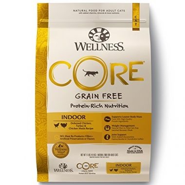 Wellness Core Natural Grain Free Dry Cat Food Indoor Chicken & Turkey