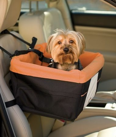 Kurgo Skybox Dog Booster Car Seat
