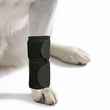 Agon Canine Front Leg Dog Knee Brace