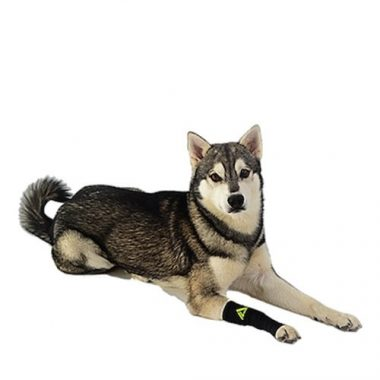 Canine Dogs Compression Sleeve