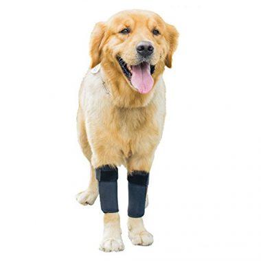 GNIKS Dog Front Leg Brace