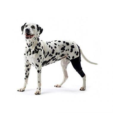 Kruuse Rehab Knee Protector Dog Knee Brace