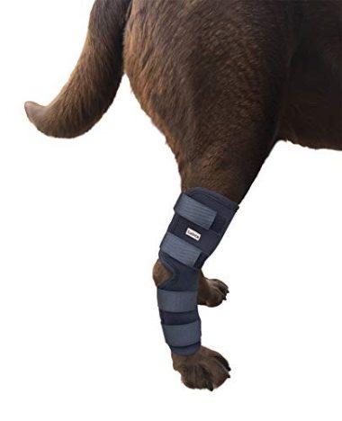 Labra Dog Knee Braces Extra Supportive Rear Leg Wrap