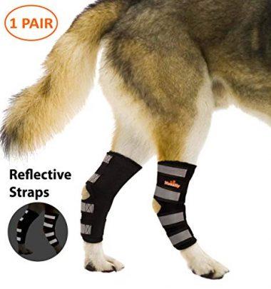 NeoAlly Rear Leg Dog Knee Braces