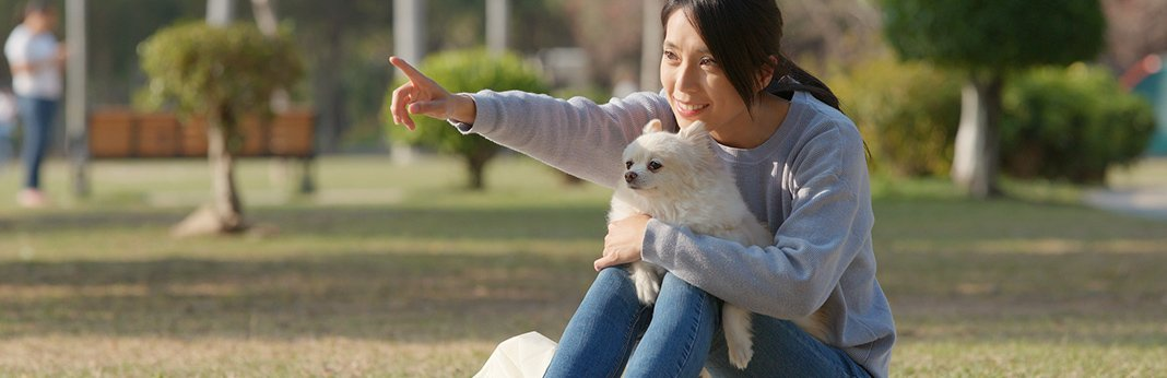 how-dogs-read-human-body-language