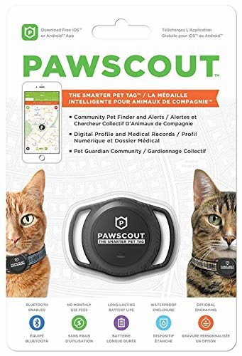Pawscout The Smarter Cat Tracker