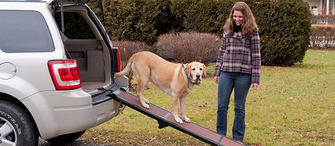 Best-Dog-Ramps-for-Your-Pooch-2