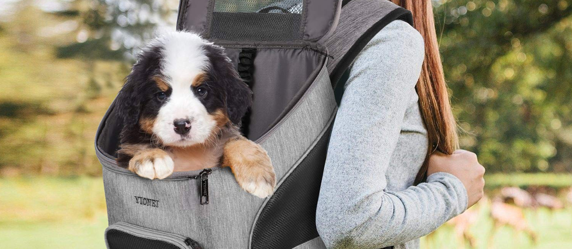 best-dog-backpack-carrier