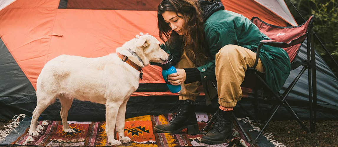 The Best Dog Water Bottles (Review) in 2019 | My Pet Needs That