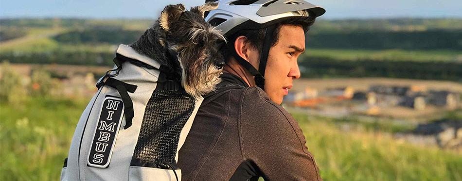 man and dog on bike