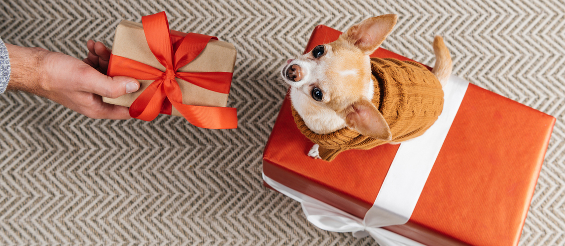gifts-for-dog-owners