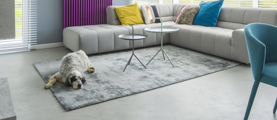 best-area-rugs-for-dogs