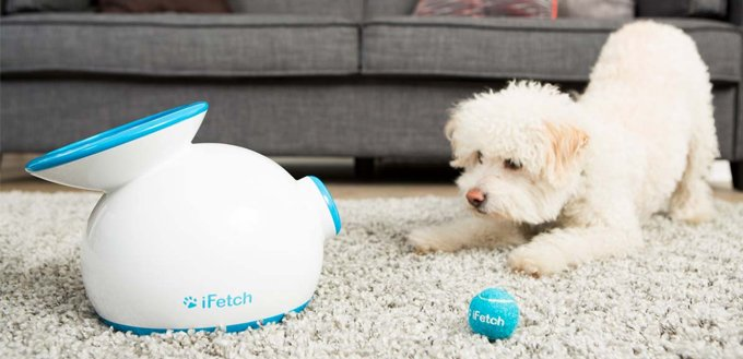 iFetch-Interactive-Ball-Launchers-for-Dogs-featured