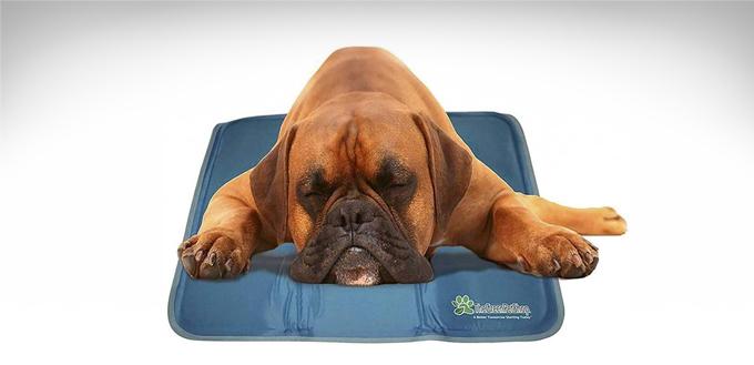 The-Green-Pet-Shop-Dog-Cooling-Mat-featured