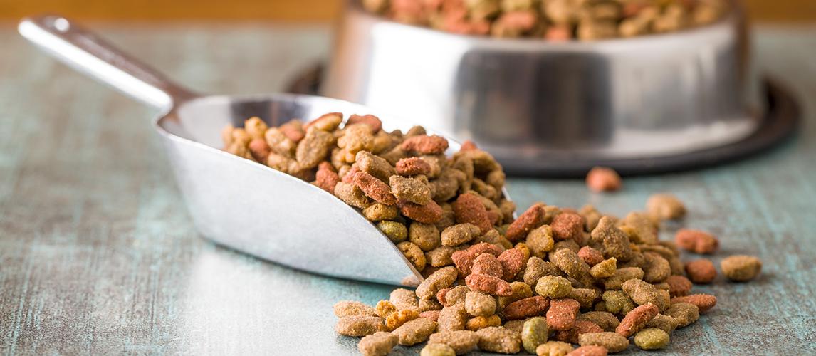 pure-balance-dog-food-review