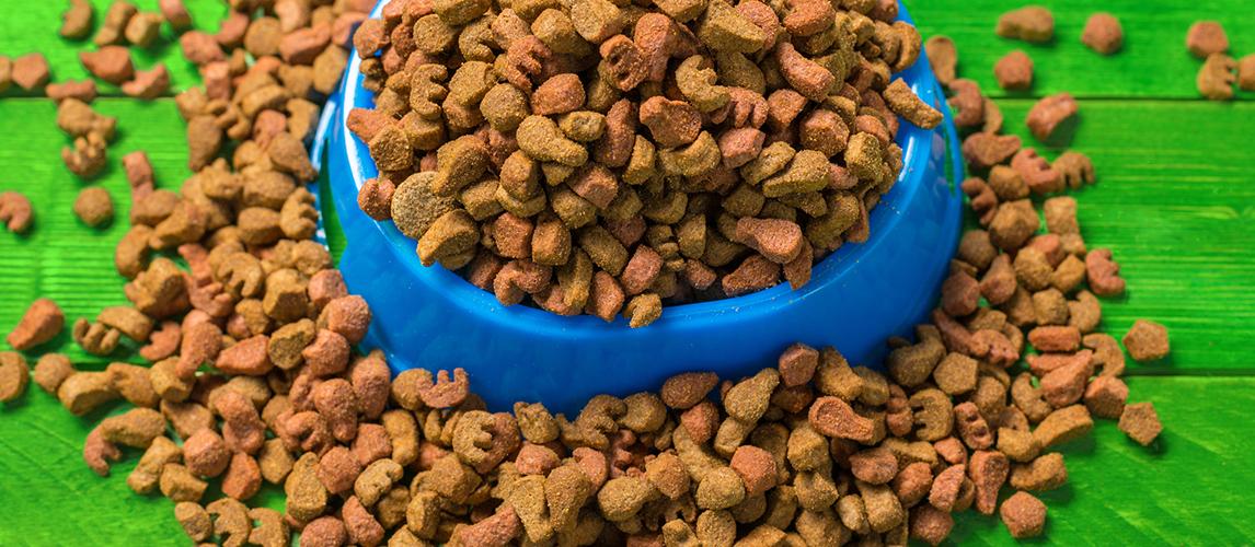 Canidae Dog Food Reviews >> Canidae Dog Food Review My Pet Needs That