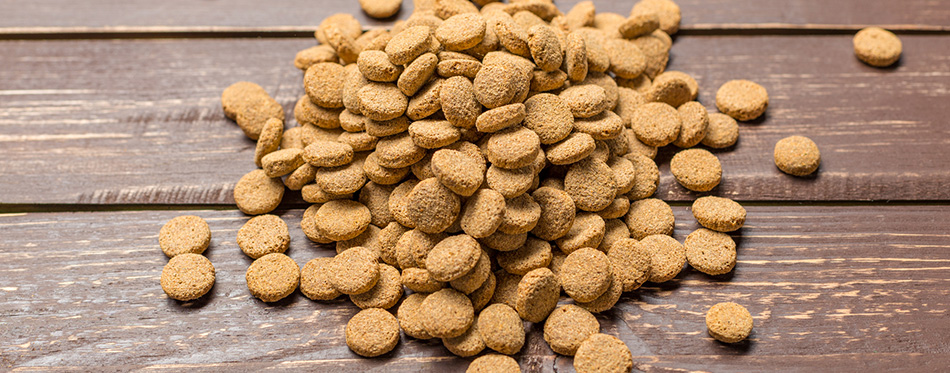 Dried food for dogs