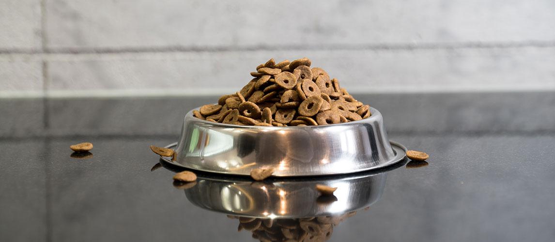 Orijen-Dog-Food-Review