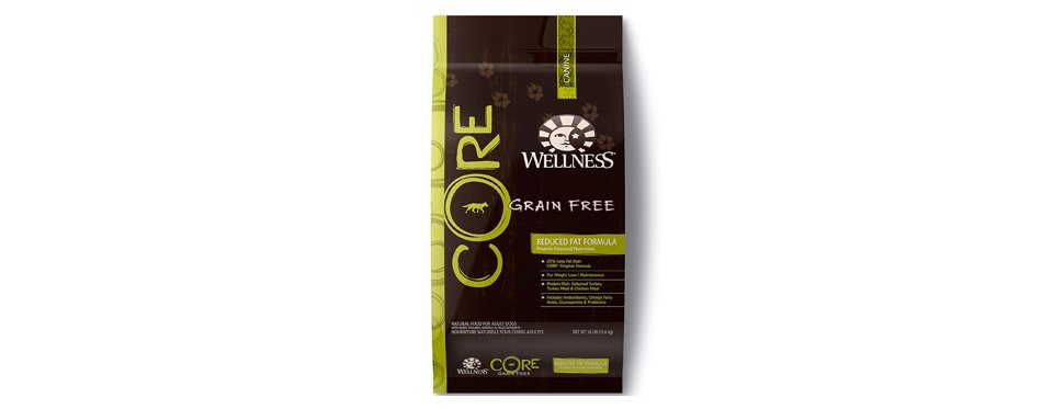 Wellness Core Natural Grain Free Dry Dog Food for Labs