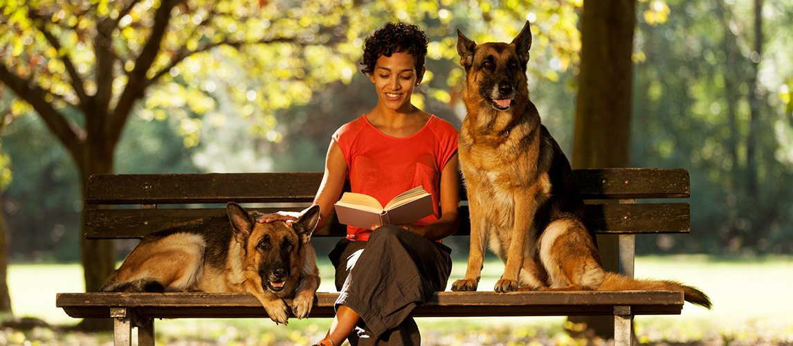Woman-is-sitting-with-two-german-shepherds