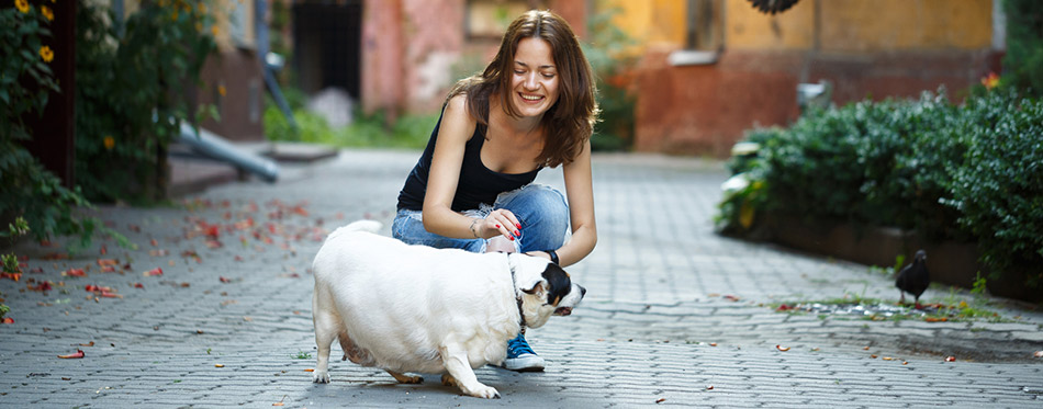 Girl with a pregnant dog